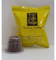 Kenya Jambo